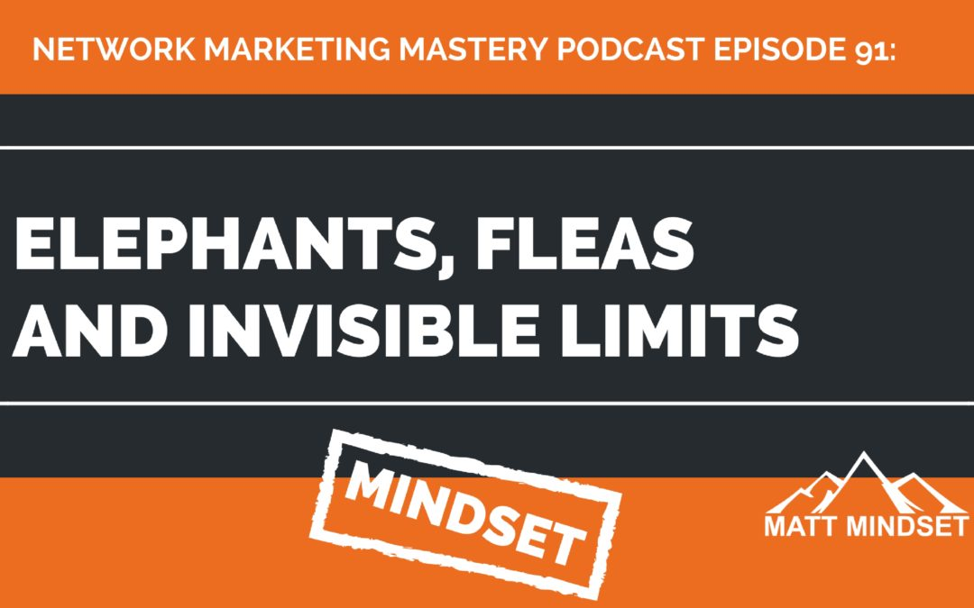 91: Elephants, Fleas and Invisible Limits